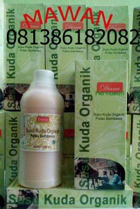 distributor susu kuda liar asli sumbawa