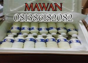 Susu Etawa Cair Medan