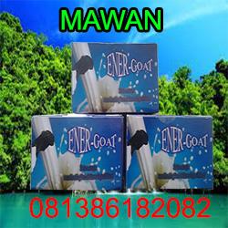 Distributor Susu Kambing Energoat