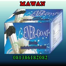 Susu Etawa Energoat