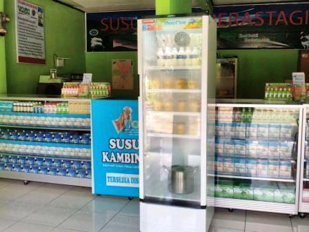 Manfaat Susu Kuda Liar Asli Organik Di Jakarta