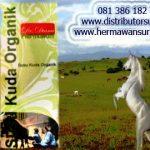 Distributor Susu Kuda Liar Asli Organik Sumbawa